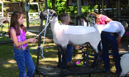 Eaton County Fair plans fun-filled week