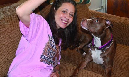 Pit bull's actions help save owner's life
