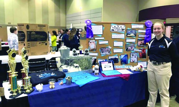 Emily's Farm continues to win young business competitions