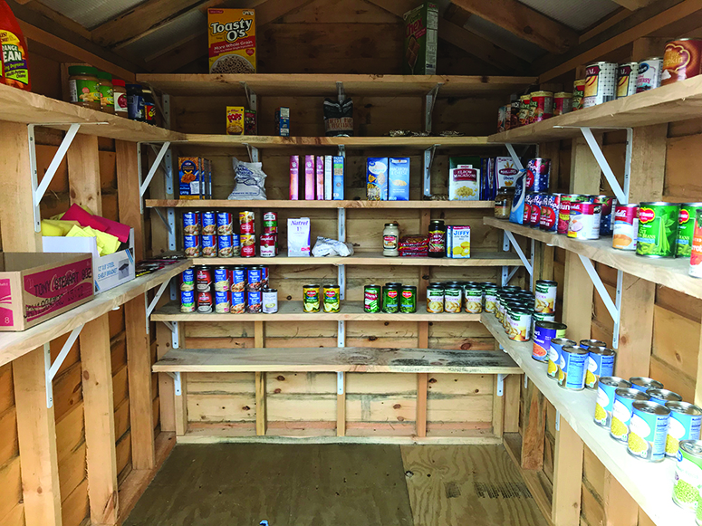 Charlotte car dealer opens community pantry