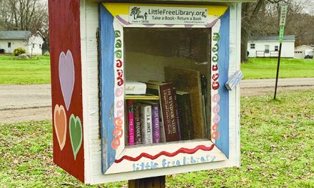 'Little Libraries' vandalism presents learning opportunity for scouts