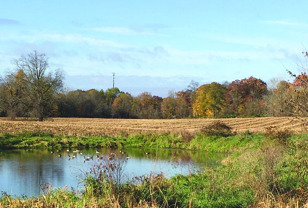 Eaton Rapids Township agrees to land transfer