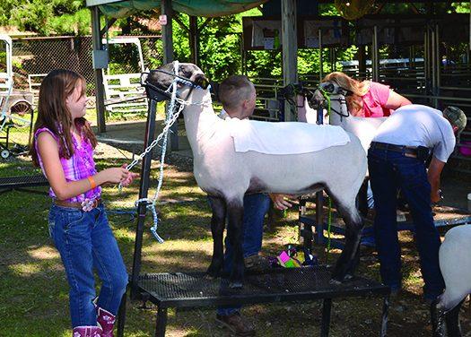 Eaton County Fair plans fun-filled week
