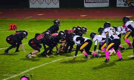 Broncos, Lions  advance to MHSAA district finals