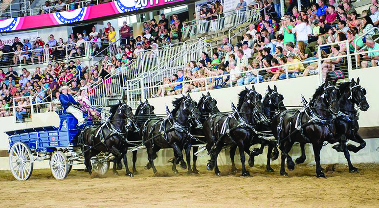 Bellevue family champions of draft horse competition