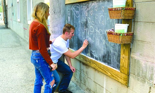 Art in the alley inspires  creativity in Eaton Rapids