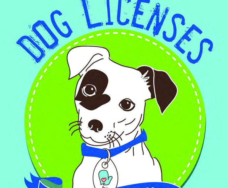 County Treasurer to Launch Improved Dog Licensing Site February 1