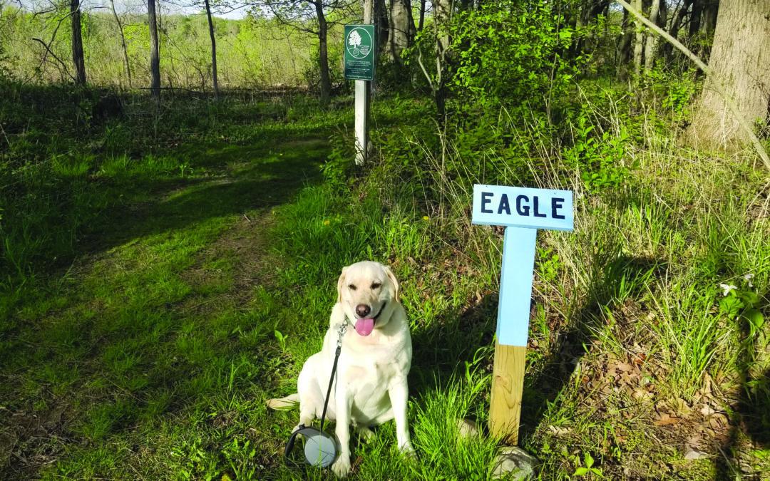 Adventurous Aggie Visits Hamlin Park