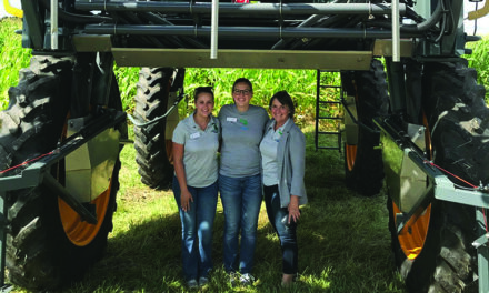 Celebrating 75 years of  Environmental Conservation